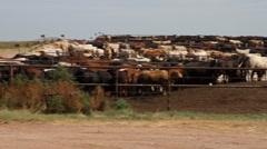 Northwest Oklahoma - Stockyard 07 Stock Footage