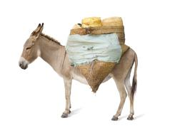 donkey carrying supplies - stock photo