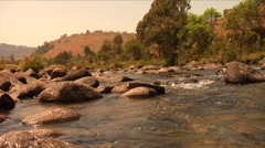 Trout Stream Wide Stock Footage