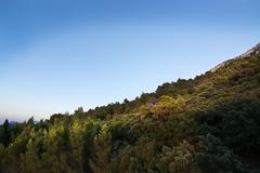 Stock Photo of Natural mountain landscape with vegetation