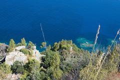 Coastal green vegetation and turquoise Mediterranean water - stock photo