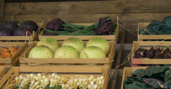 Vegetables boxes Stock Footage