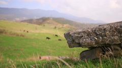 Distant field with cattle rack focus slider shot Stock Footage