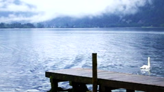 Beautiful calm cloudy lake with small port and swan, lake at Hallstatt, Austria Stock Footage