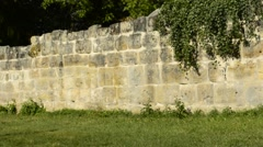 Medieval abbey wall with penitence cross - stock footage