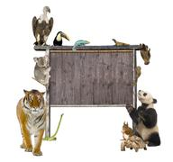 Group of wild animals around a blank wooden sign - stock photo