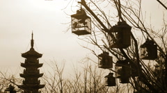 Birdcages in a park in China Stock Footage