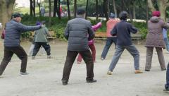 Old people in Asia practice tai chi in park Stock Footage