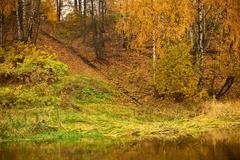 ladder on autumn riverbank - stock photo