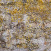 Old wall covered with lichen Stock Photos