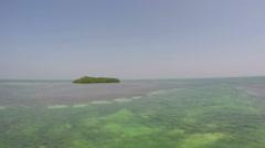 Florida Keys Mangrove Island Stock Footage