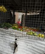 Fruit in little shop made with sheet metal, Africa, Tanzania Stock Photos