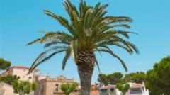 Typical Spanish house establishing shot 4k, palm tree and clear blue sky Stock Footage