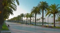 Palm trees promenade in Salou, 4k Spain, Europe Stock Footage