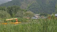 Grass along Dal Lake with shikara passing,Srinagar,Kashmir,India Stock Footage