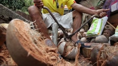 A man is taking husk off coconut. - stock footage