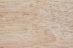 Texture and pattern of old  log Stock Photos