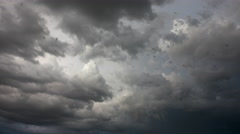 4K Flying Bats Swarm Dark Storm Clouds Stock Footage