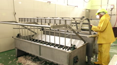 Equipment cleaning and sanitation in slaughterhouse - stock footage