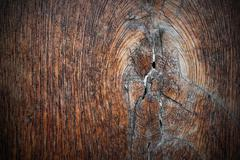 Stock Photo of knot on ancient oak plank, texture for your design ( Quercus robur )