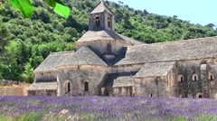 Senanque Abbey with lavender field, Provence, France Stock Footage
