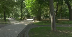 A Fairy Tale Looking Mariyinsky Park With Its Old Park Lane, High Green Trees Stock Footage