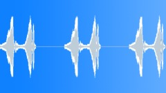 Bird, Lark 5 - sound effect