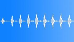 Bird. Cuckoo 14 - sound effect