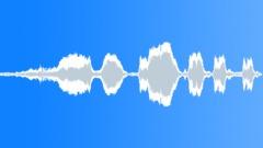 Duck 2 Sound Effect