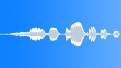 Duck 3 Sound Effect