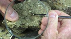 Paleontologist removing overburden Stock Footage
