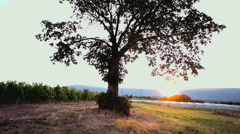 Sunset in campaign - stock footage