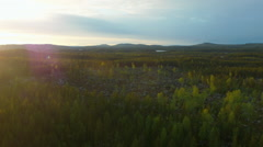 Aerial drone shot of forest at sunset Stock Footage