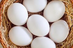 Raw eggs Stock Photos