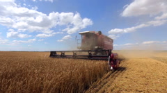 Combine Harvester in action, shot glidecam in motion Stock Footage
