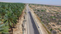 4K Aerial of Jericho Date Palms Stock Footage