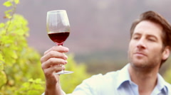 Young winegrower looking and smelling wine Stock Footage