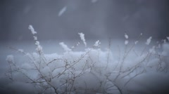 Snow falls on the grass Stock Footage