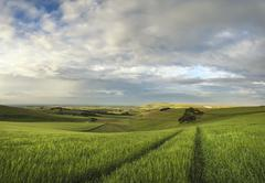 Stock Photo of Beautiful panorama landscape South Downs countryside in Summer
