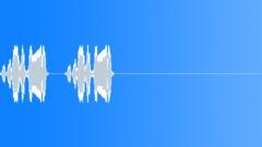 Spix's macaw 10 Sound Effect