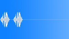 Spix's macaw 11 Sound Effect