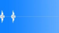 Spix's macaw 13 Sound Effect