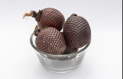 Exotic fruit of America: Aguaje or Moriche palm fruit mauritia flexuosa. - stock photo