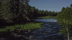 Northern Maine: Shallow River in Lush Green Woods Stock Footage