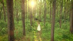 Aerial Inside Woods Through Trees As Woman Walks Through Forest White Vintage - stock footage