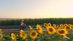 Beautiful Farm Girl Model Riding A Bicycle Through Rural Sunflower Field Summer Stock Footage