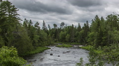 Northern Maine: Shallow River in Thick Woods Stock Footage