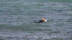 Blonde girl peddling on surfboard - stock footage