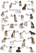 Composition of dog barking onomatopoeias from the world, German version Stock Photos