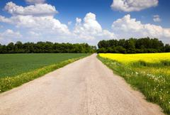 Country road Kuvituskuvat